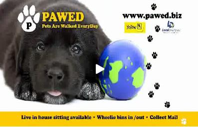 PAWED Cinema Ad